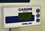 Callie Vet 2 1000.jpg